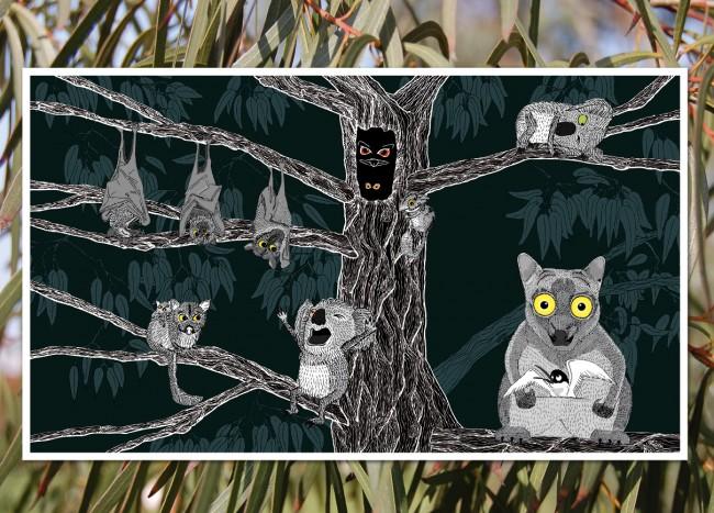 tern-illustrations2