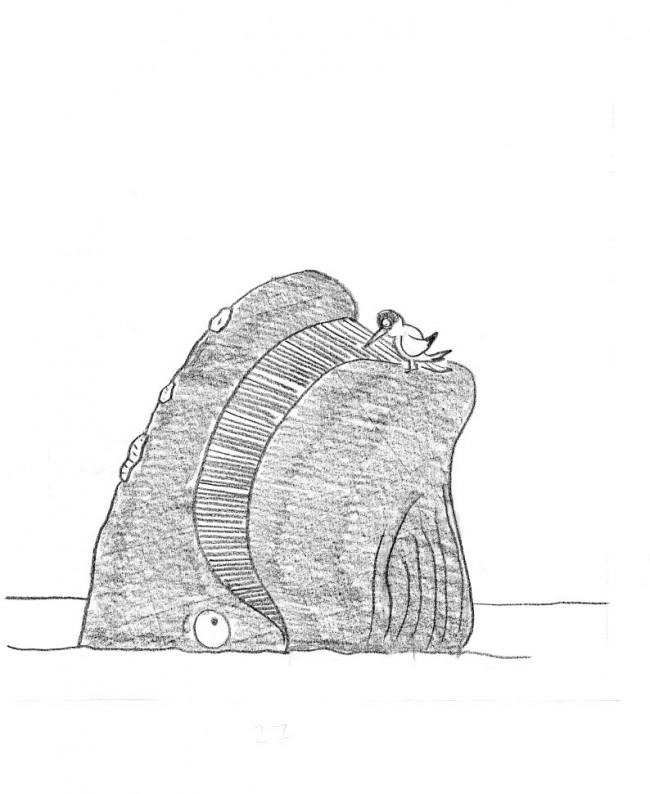 tern-sketch12